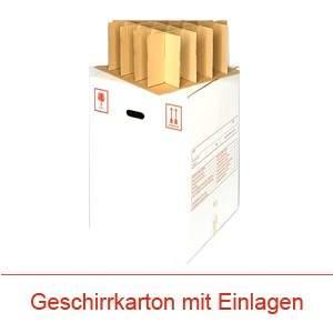 Helvetia Transporte Verpackung Karton mit Einlagen